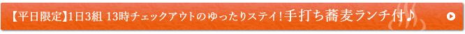 【平日限定】1日3組 13時チェックアウトのゆったりステイ!手打ち蕎麦ランチ付♪