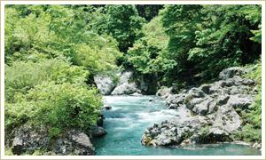秋山郷 中津川渓谷